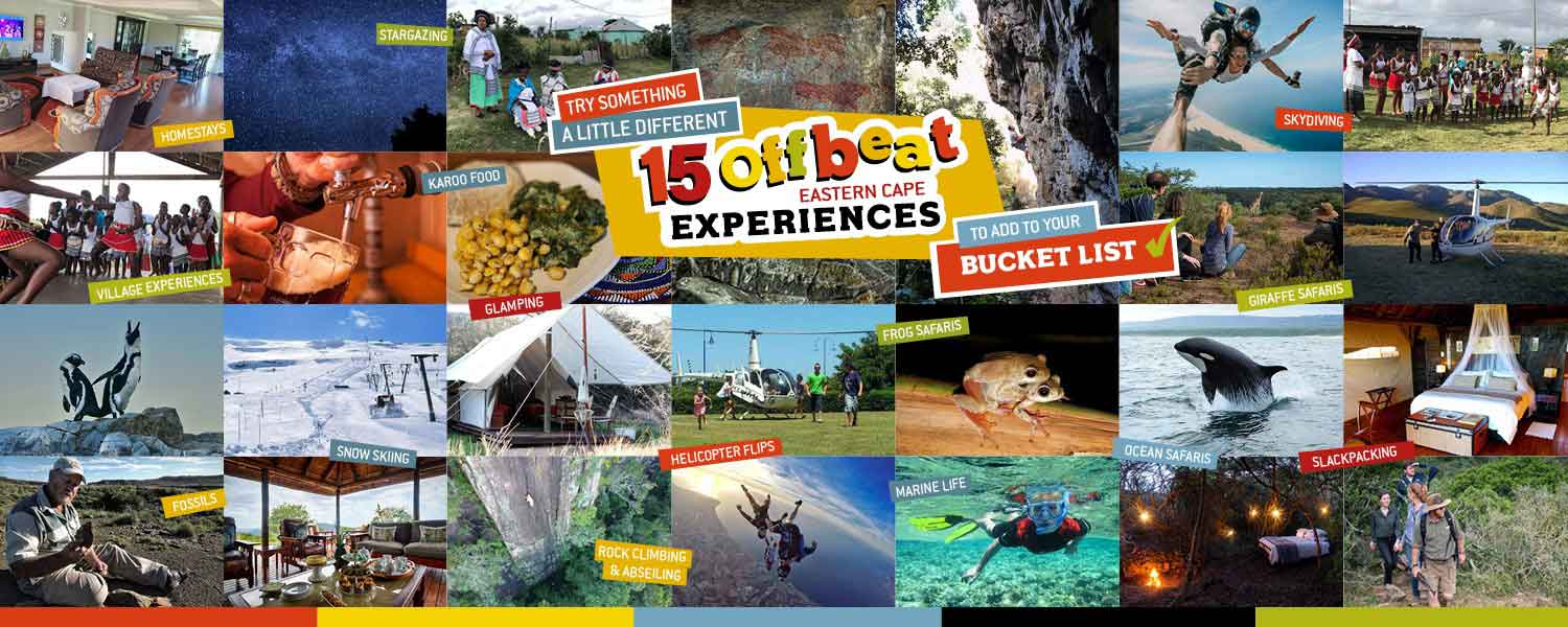 15 Offbeat Eastern Cape experiences